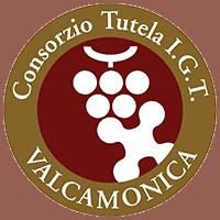 consorzio-tutela-igt-valle-camonica-logo